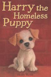 Picture of Harry the Homeless Puppy