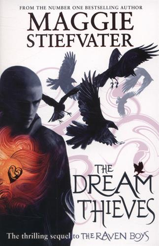 Picture of The Dream Thieves