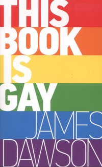 Picture of This Book Is Gay
