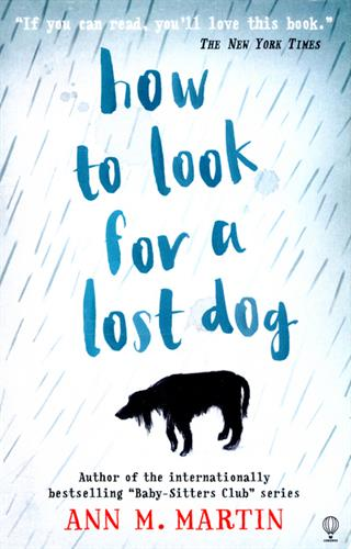 Picture of How to look for a lost dog
