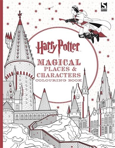 Picture of Harry Potter Magical Places an