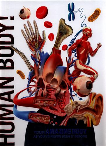 Picture of Knowledge Encyclopedia Human Body HB