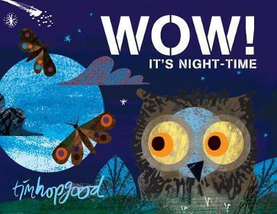 Picture of WOW Its Night Time Board Book