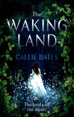 Picture of Waking Land