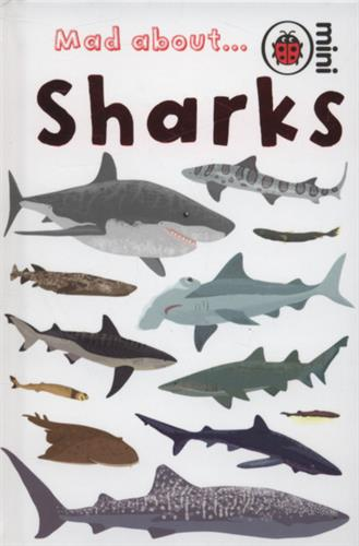 Picture of Mad About Sharks